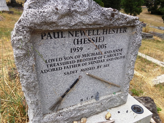 Image result for paul hester pic